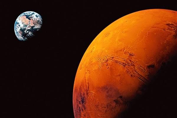 Penampakan menarik muncul di planet Mars, ada tupai, kelinci, babi, dan tikus